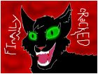 Insane Hollyleaf