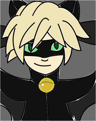 Finished Chat Noir