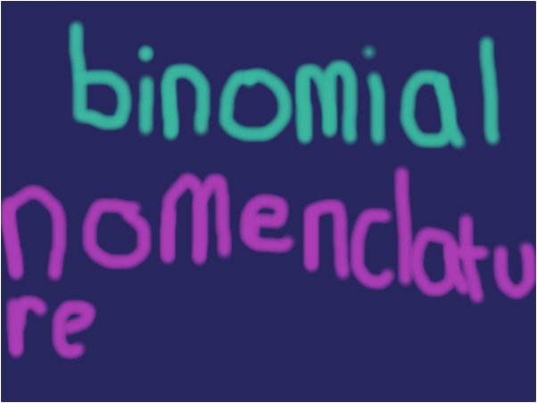 binomial nomenclature Classification taxonomy six kingdoms of life archaea&bacteria:organisms which are single celled that do not have a nucleus, organisms are very diverse.