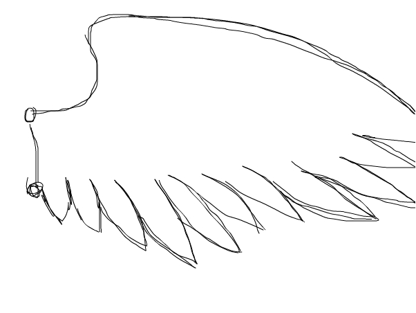 How to draw angel wings 3