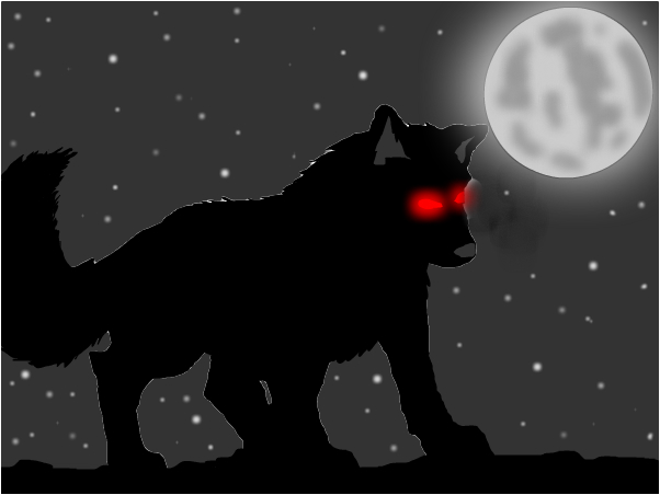 Wolf in the night!