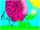 rose -_-