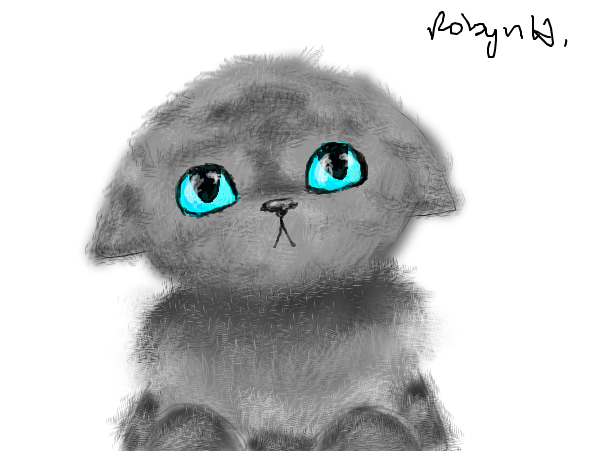 Kitten Head and Body =3