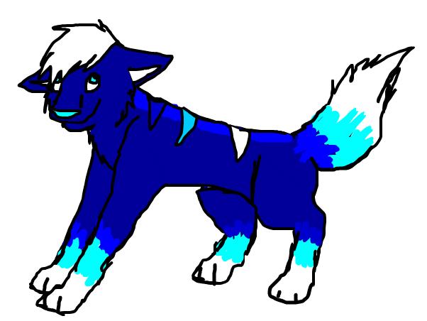 Im on!~wolf