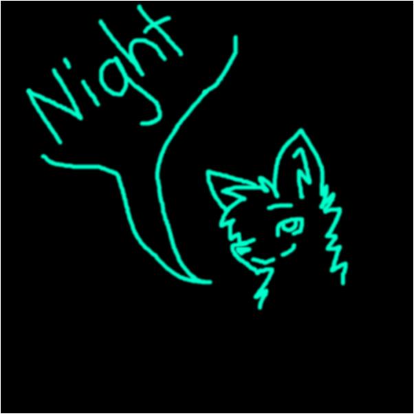 Night Guys