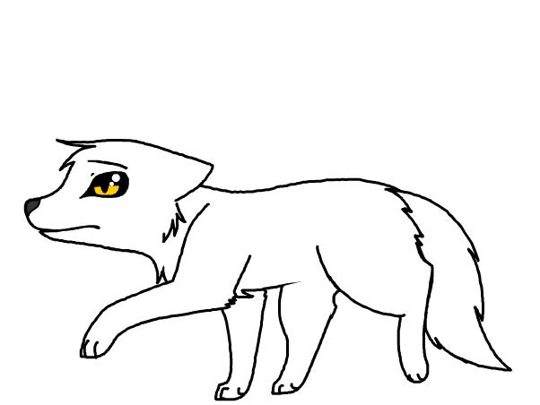 wondering white teen wolf