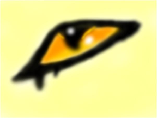 Cougar eye