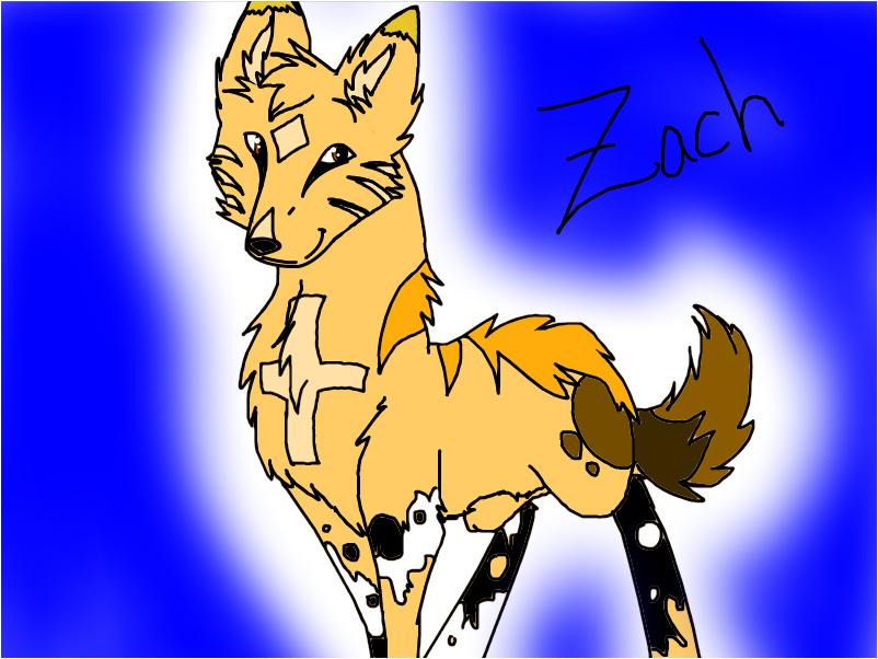 Zach's Fursona