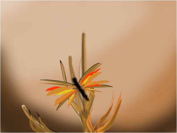 quick butterfly