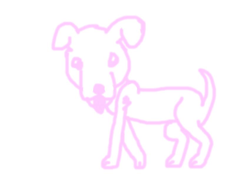pink outline of my dog named Banks