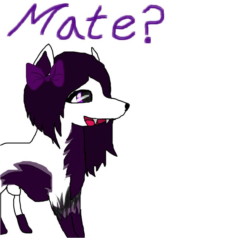 """Stella: """"Mate anyone?"""""""