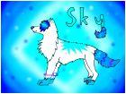 CONTEST! ~Sky