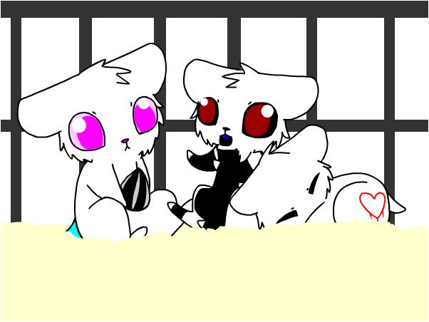 Hamsters with Zero and Washy~