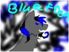for blue frreak