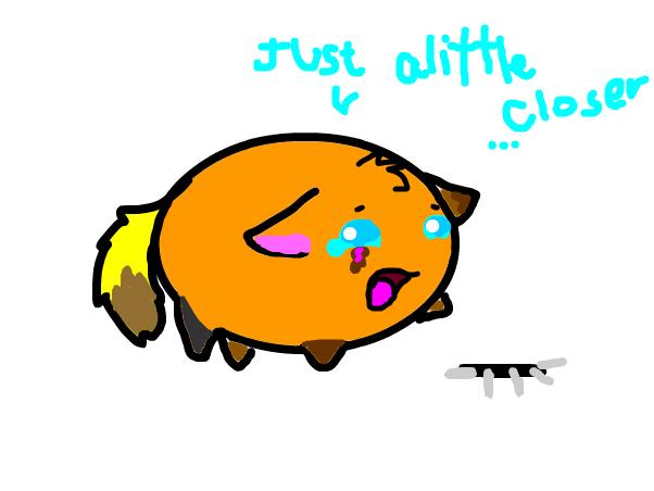 BunnyLover's Chubbie