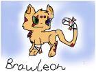 Brawleon!(fan-made eeveeloution)WIP