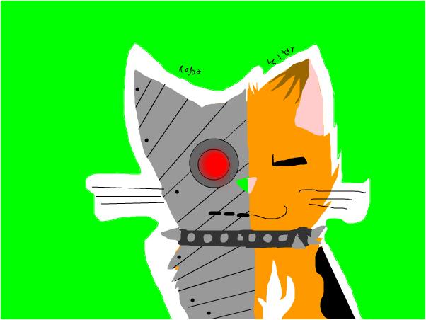 robo kitty!!!!!!
