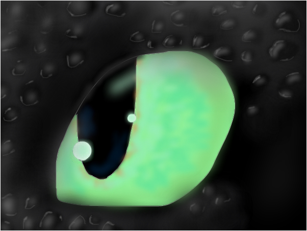 the eye of toothless