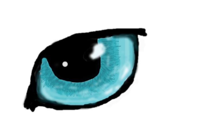 Cat Eye- unfinished