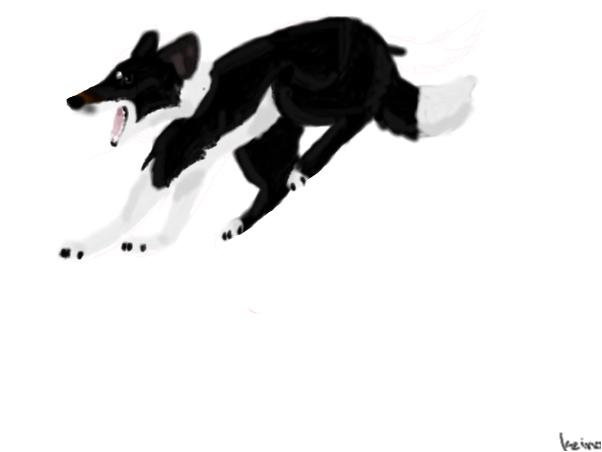 Doggeh (wip)