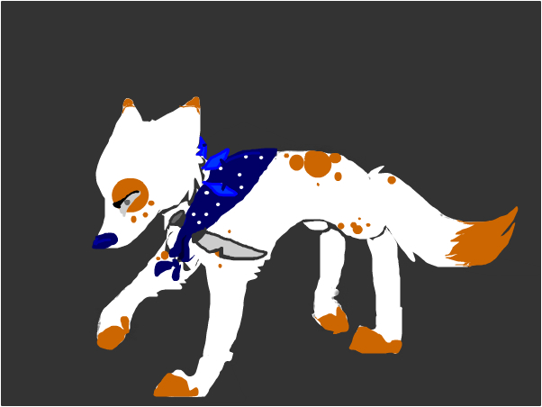 About Kia (The name of this wolf for Sp)
