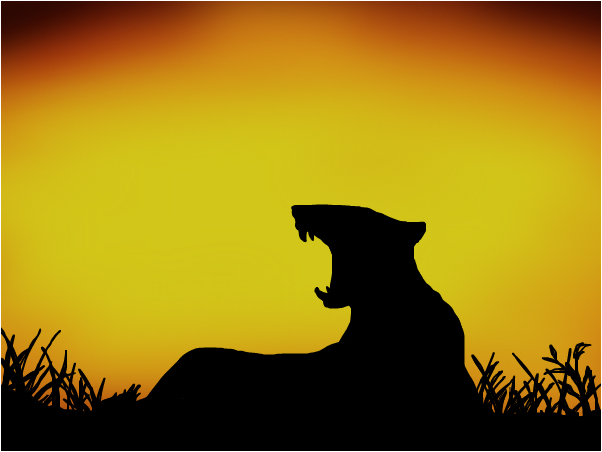 Lioness sunset (animal collection?)