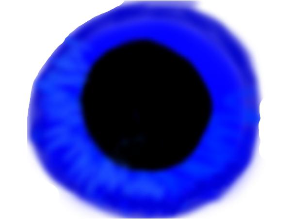 wip eye
