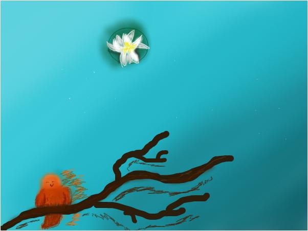 Bird on the water
