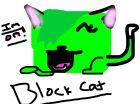 BLock cats on!