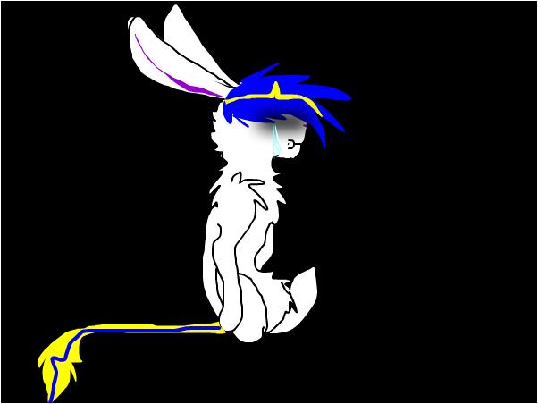 won't anyone say hi?~Bunny