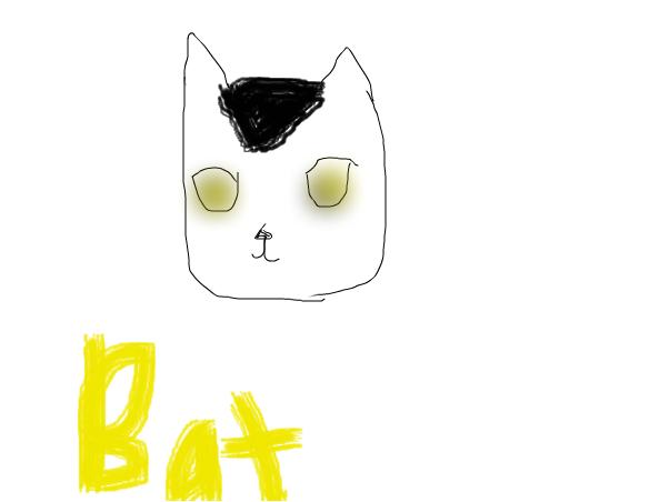 Meet Bat
