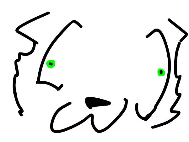 read luke~Bunny