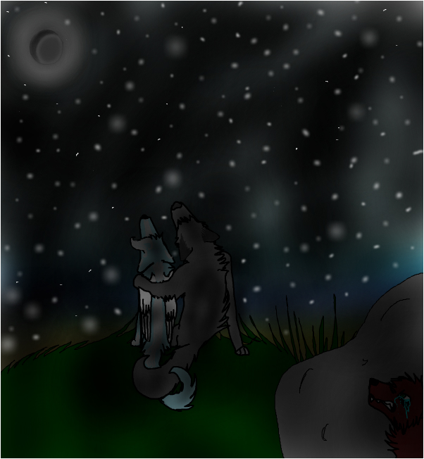 Counting stars pic