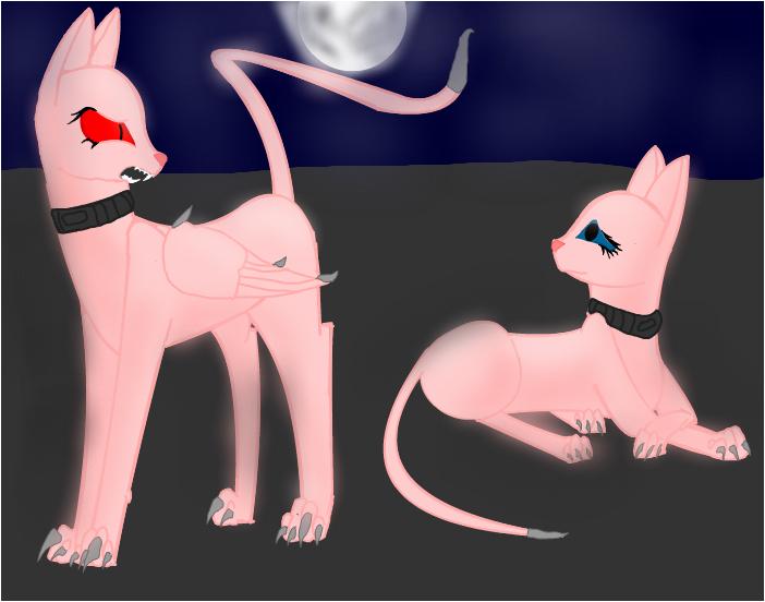 Midnight and Luna