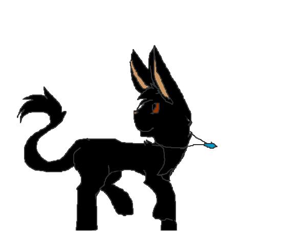 monty as a nexus~Bunny
