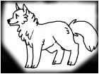 How i draw wolves/dogs