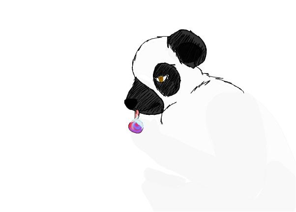 wip panda