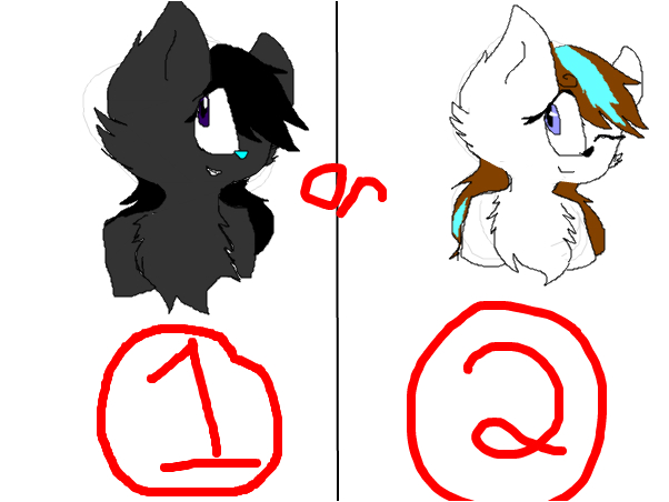 Which should be Kolie?
