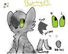 Butters, my kitten :D