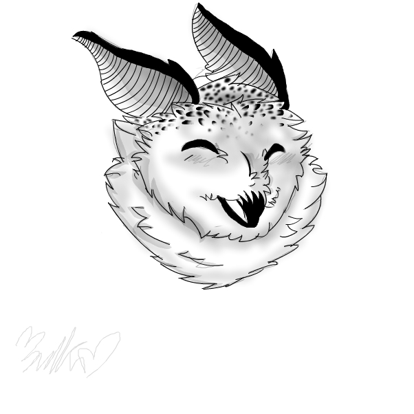 owl silk moth-Bunny