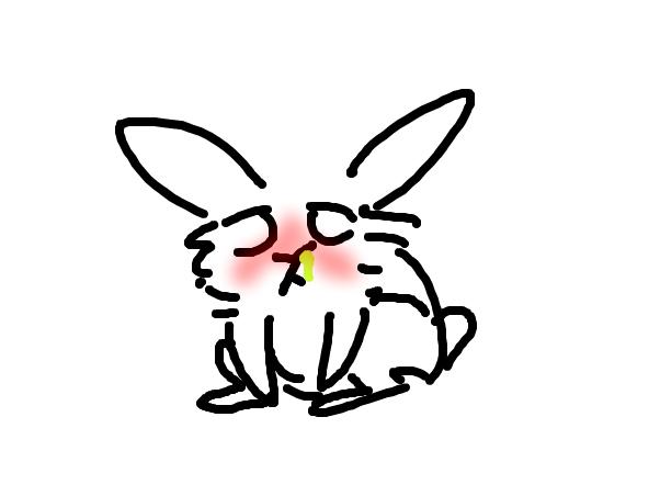 sick bunny-Bunny