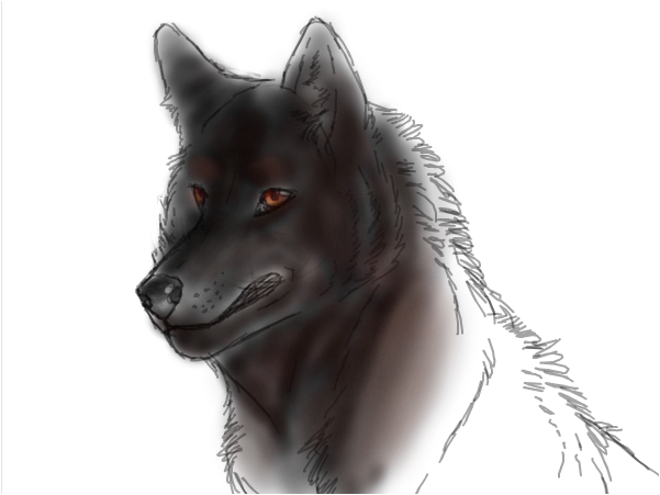 If I were a wolf,