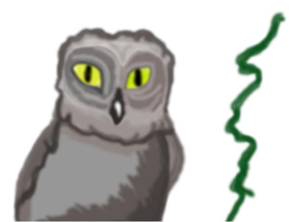 smart like an owl