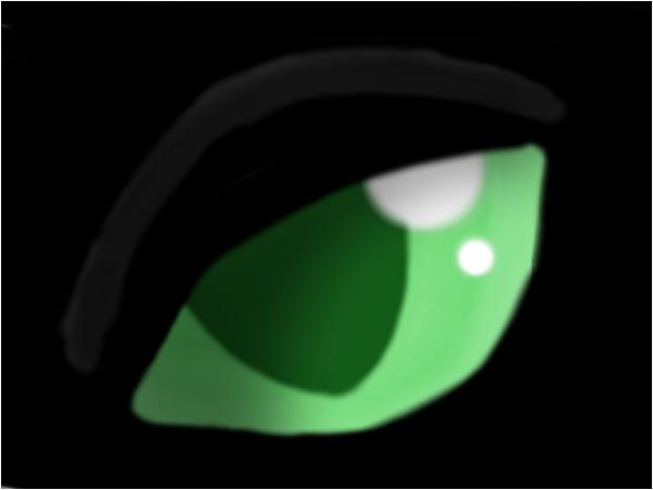 Eye Practice ~KItten