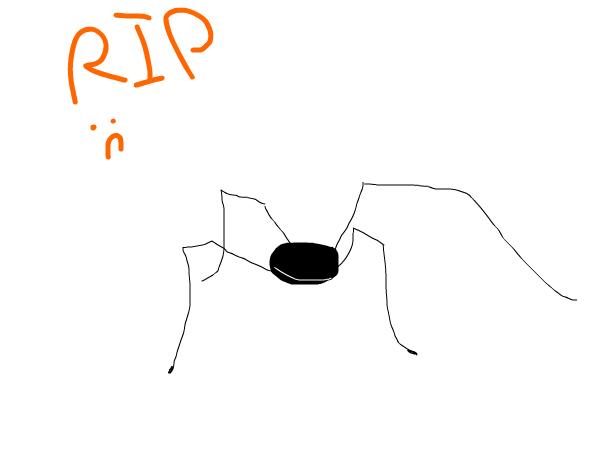 RIP, Carter - EDAN