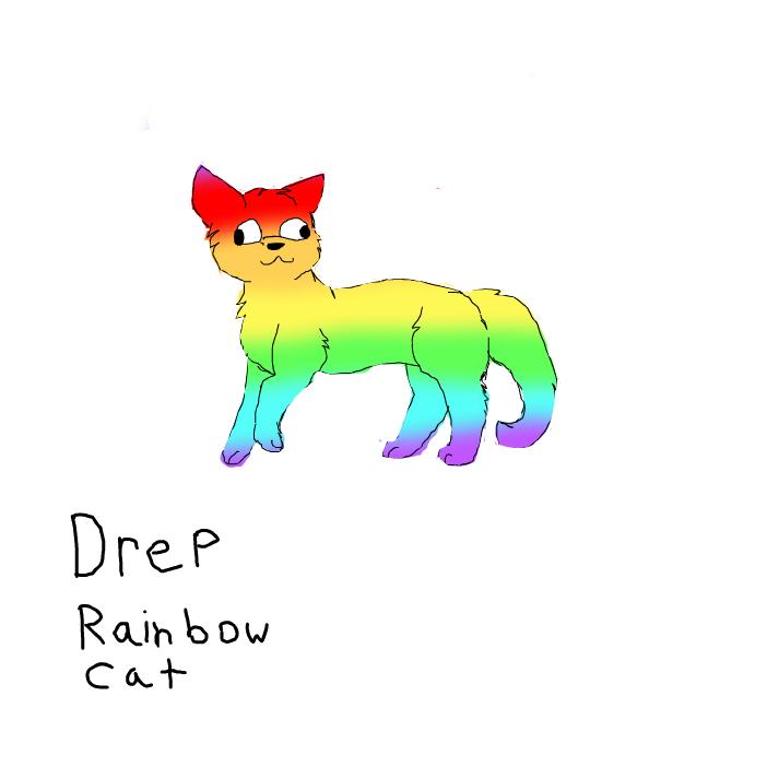 Drep rainbow cat