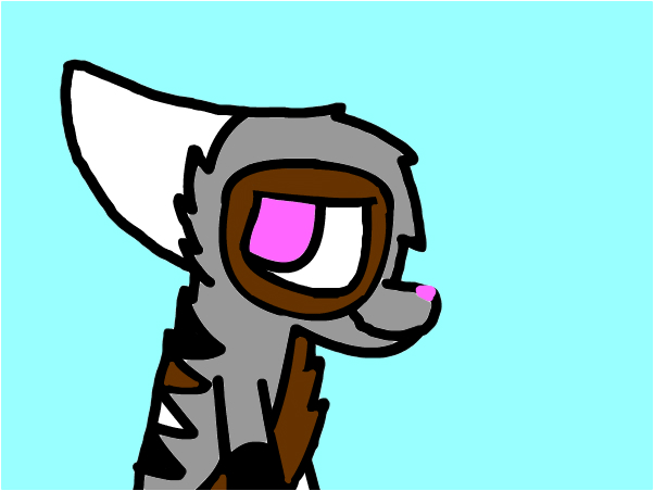 RainPie Warrior Cat Oc