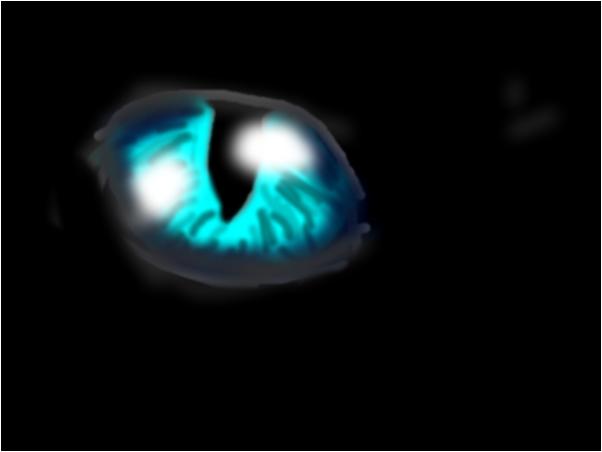 Blue Eyed Black Cat (Unfinished)
