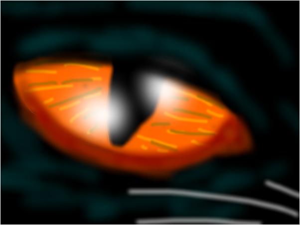 Black Cat, Orange Eyes