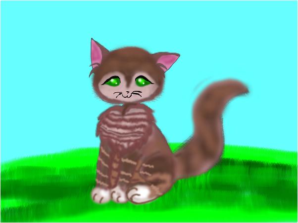 tabby catt
